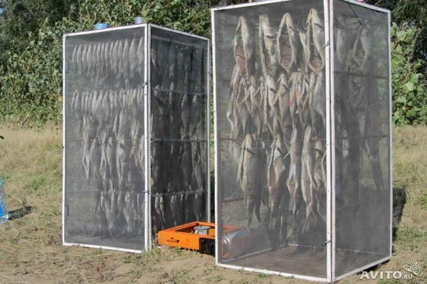 Сушилки для вяления рыбы