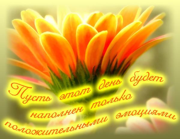 intimnoe-pozhelaniya-s-dobrim-utrom