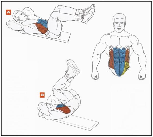 Как быстро накачать ребёнку мышцы и пресс