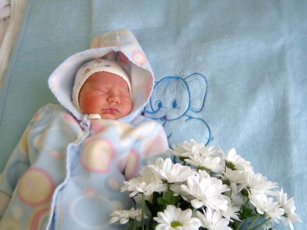 плетение, фенечка, выписка в мае как одеть ребенка месторасположение, шикарные