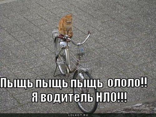 http://otvet.imgsmail.ru/download/bef3441e9710f1bb3ba22fe212f669ec_i-369.jpg