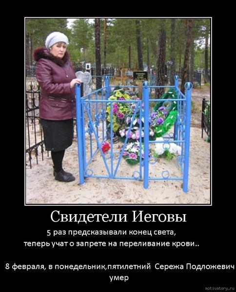За несанкционированный митинг с уточками на родине дубровского осуждена внесистемная оппозиционерка