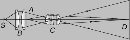 Виды псориаза и его меню
