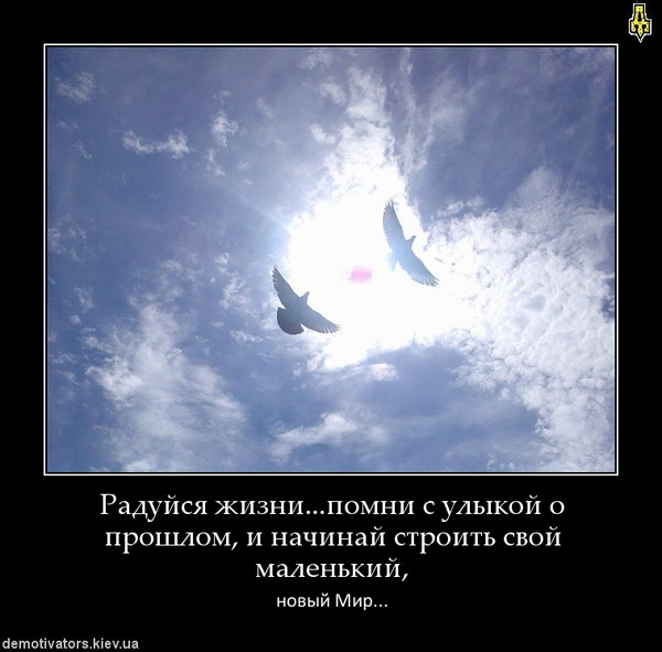http://otvet.imgsmail.ru/download/c41d23f1f3fe92efe266febd35114078_i-5268.jpg