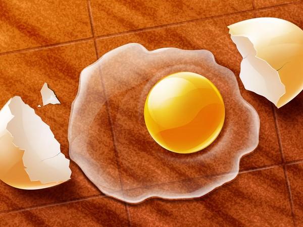 еда яичница желток  № 747076 загрузить