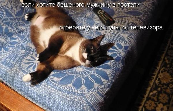 beshenaya-v-posteli