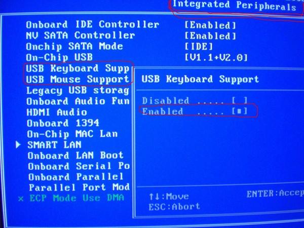 Почему в биосе не работает usb-клавиатура