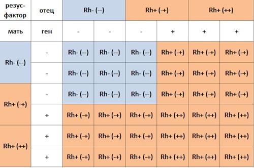 Отличия людей с первой, второй, третьей и четвёртой группой крови