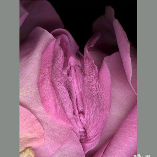seks-za-dengi-perm