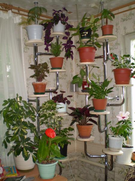 Полки для цветов навесные 162