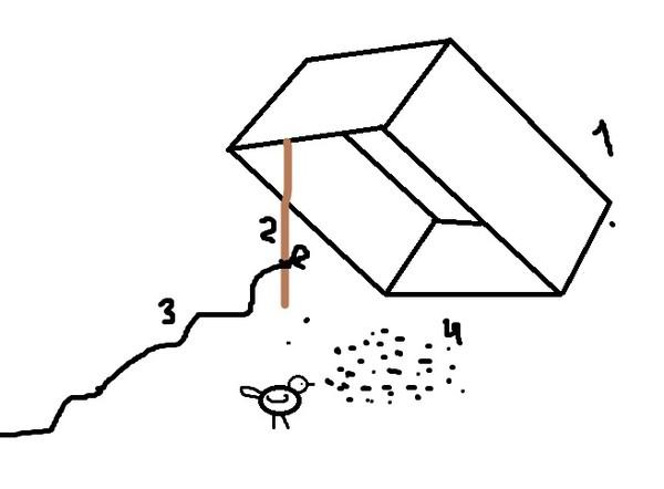 ловушка для птиц как сделать фото