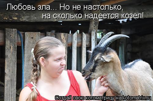 Может ли козел научить другого козла блеять по-своему?
