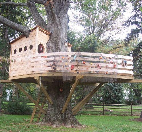 Как детям построить домик на дереве своими руками