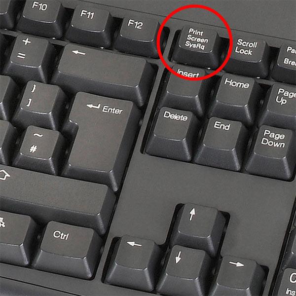 Как сделать скриншот клавиатурой
