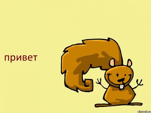 http://otvet.imgsmail.ru/download/f6dd5087250d55a5e881a8bb7ad357a7_i-5746.jpg