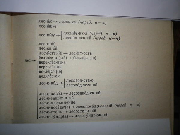 Словообразовательные Гнезда Словарь