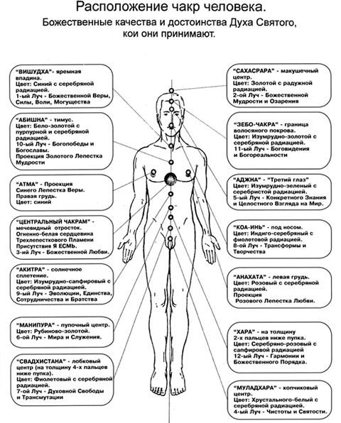 Схема чакр на теле человека