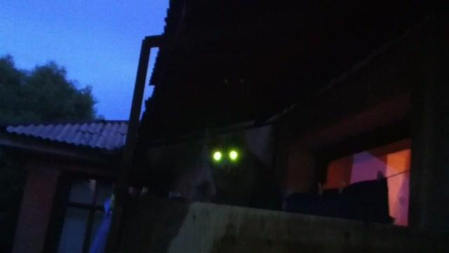 pisayushaya-v-rot-onlayn-video