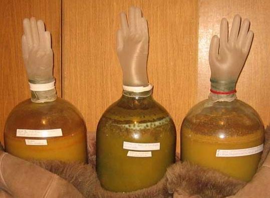 Сидр в домашних условиях приготовление