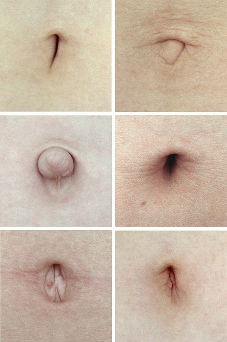 Anatomy of belly button