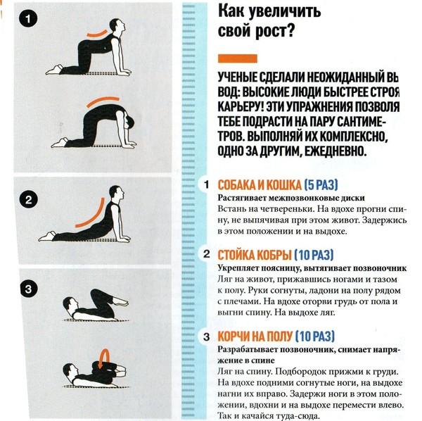 Как увеличить рост в домашних условиях с упражнениями