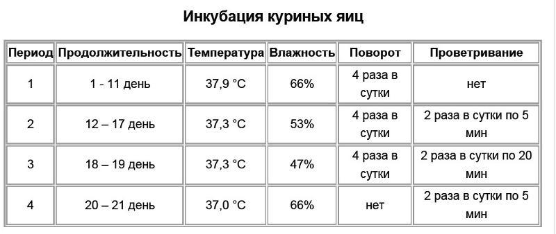 Температура для куриных яиц в инкубатор в домашних условиях