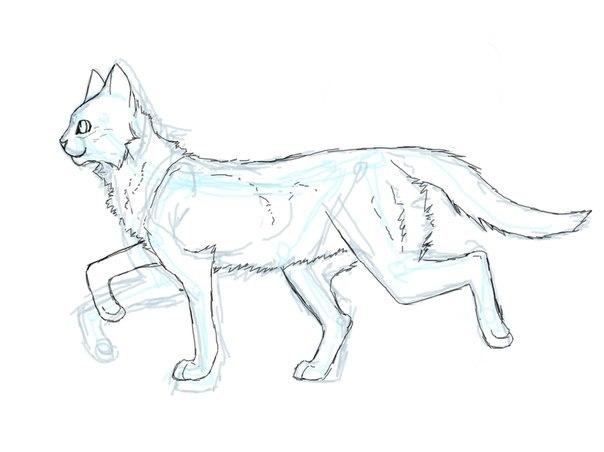 Как рисовать котов-воителей поэтапно