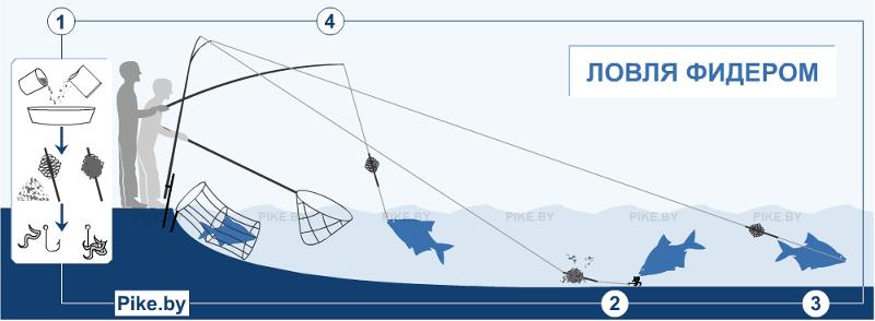 рыбалка фидерная снасть удилище