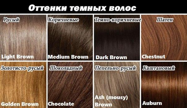 цвета волос и названия фото