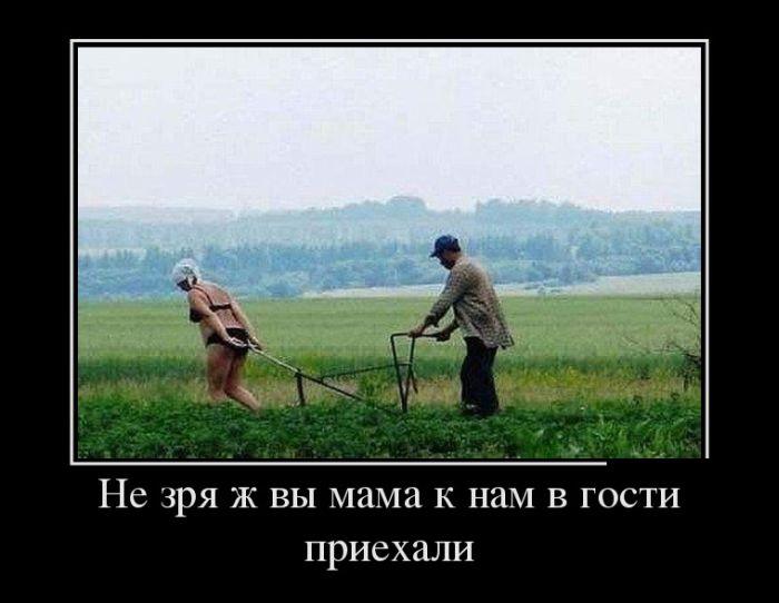 foto-armyanochek