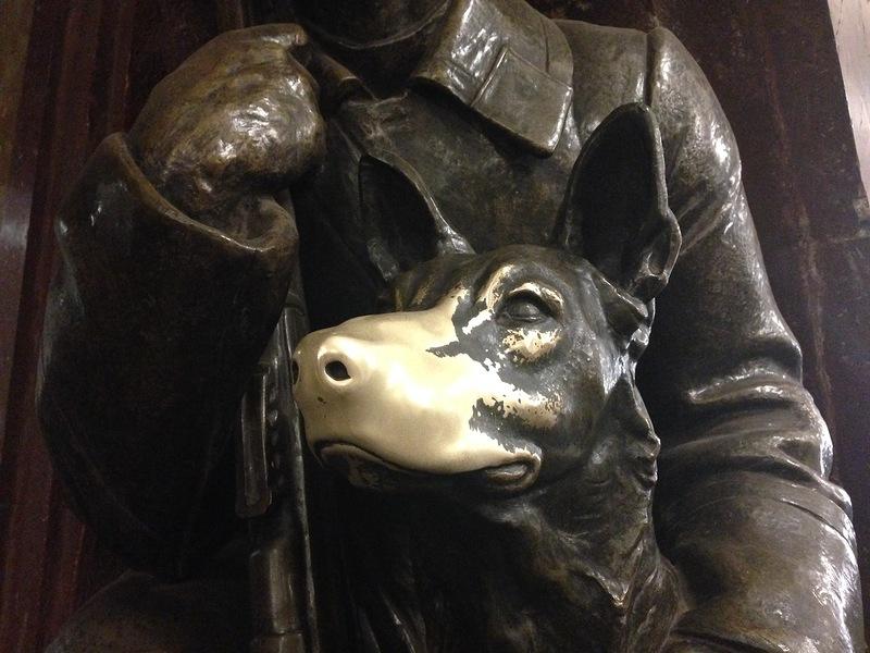 Почему собаке трут нос на площади революции