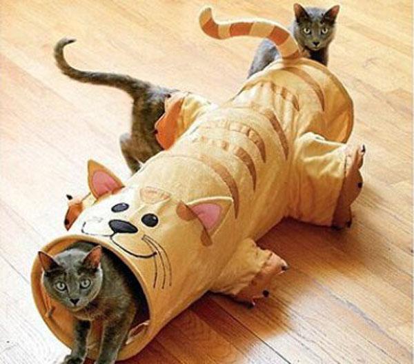 Дом для кошки чертежи и фото