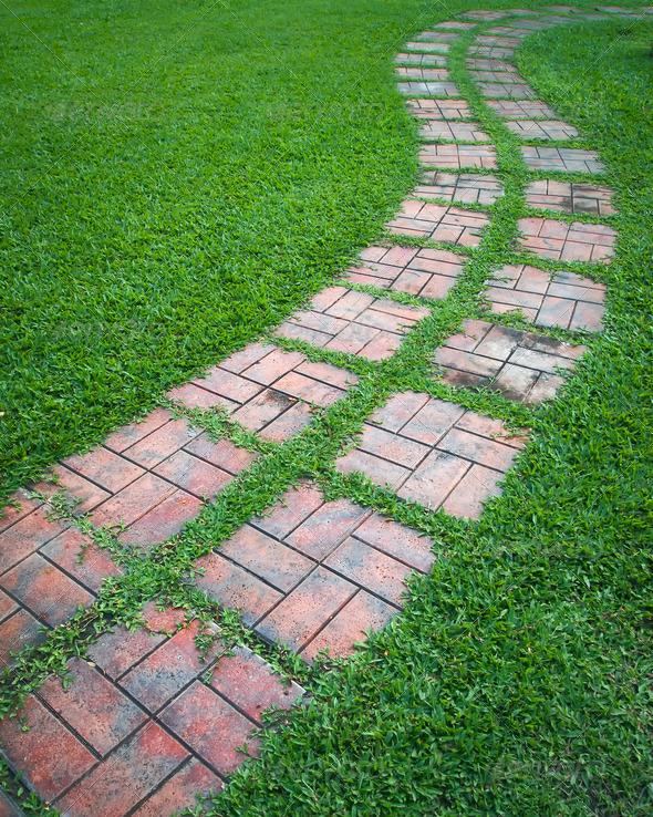 Дорожки из тротуарной плитки своими руками