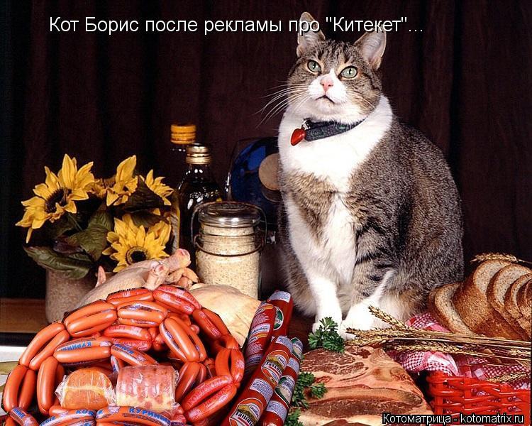 Анекдот: — А где моя сосиска?! — Кот сожрал. — Вот…
