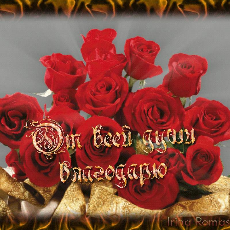 http://otvet.imgsmail.ru/download/u_f55b22be0509bb022d47381499f7c5bd_800.jpg