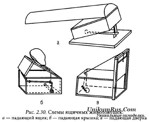 Как сделать капкан для птиц своими руками