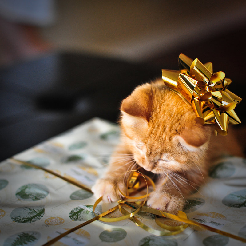 Подарки от Бюро находок - buro-nahodok.ru