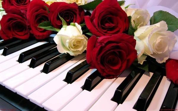 красивые цветы и музыка фото видео