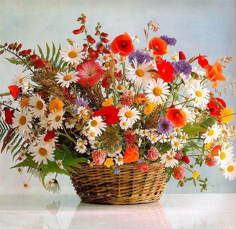 фото цветы полевые букет