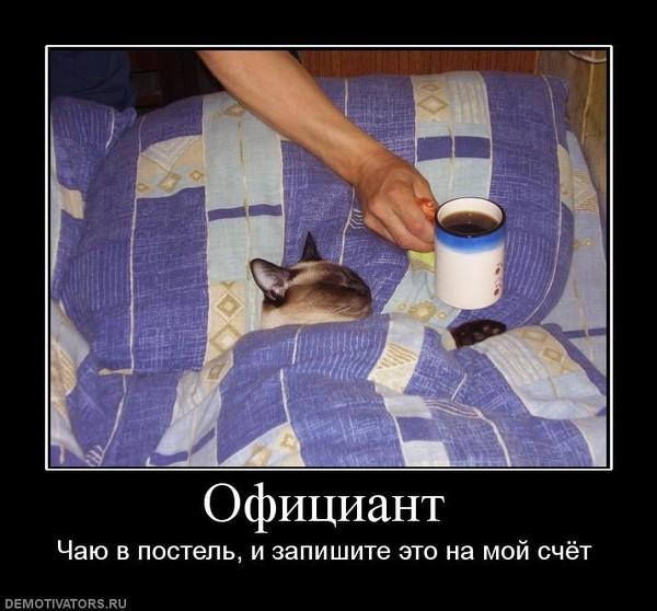 Картинка кофе в постель с приколом