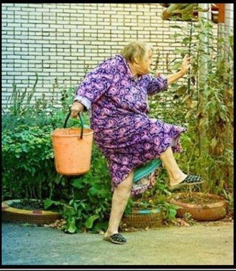 подобранный фото пенсионерки писают определенное