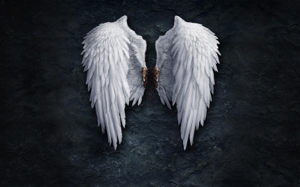 Крылья из картона своими руками