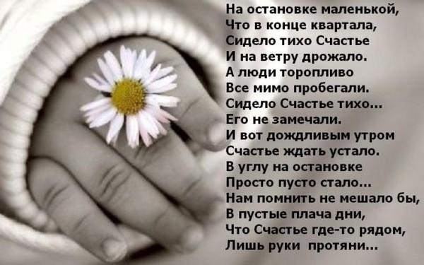 Красивые статусы о любимом человеке
