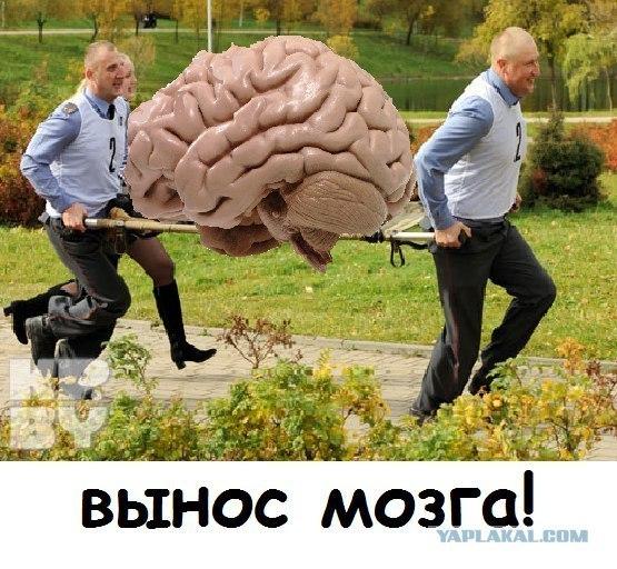 Картинка с выносом мозга