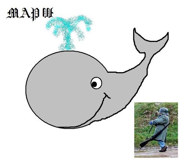 блок картинка как кит марширует обои