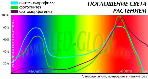 тех необходимые для растений спектр ламп при производстве