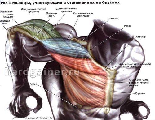 Как делают операцию на грудь