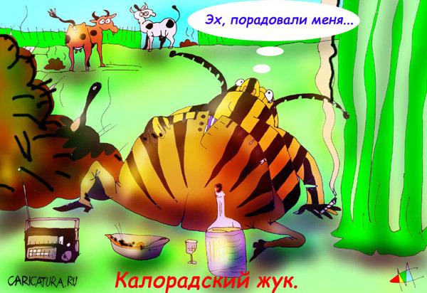 Прикольные картинки про жука, узор картинки