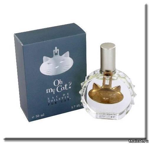 Cat perfume uk