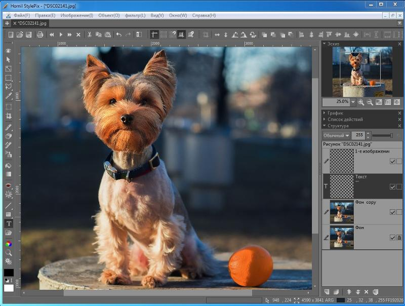 простые программы для редактирования фотографий выпускников